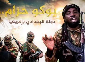 تحركات بوكو حرام في الشمال النيجري «متنفس جديد» لداعش